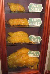 Weight loss 5 lbs, 10 lbs, 15 lbs, 20 lbs