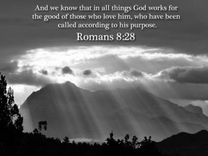 Mothering for All Things to Work Together - Romans 8:28